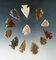 Set of 12 Colorado arrowheads in the largest is 1 1/8