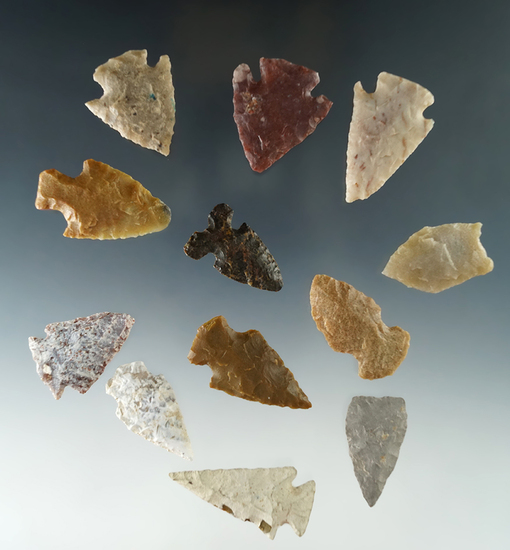 "Set of 12 assorted arrowheads found in Colorado, largest is 1 1/2""."