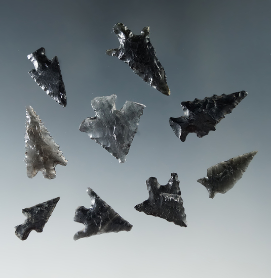 "Set of nine obsidian arrowheads found in Oregon, largest is 1""."
