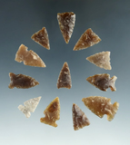 Group of 12 assorted mostly Knife River Flint arrowheads found in the Dakotas, largest is 7/8
