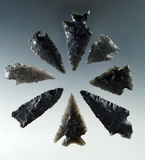 Set of eight assorted obsidian arrowheads found near Fort Rock Oregon, largest is 2 1/16