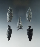 Set of five arrowheads found near Fort Rock Oregon, largest is 1 5/8