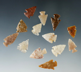 Set of 12 assorted arrowheads found in Colorado, largest is 1 7/8