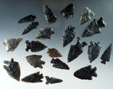 Set of 20 assorted arrowheads found in Nevada, largest is 1 3/4