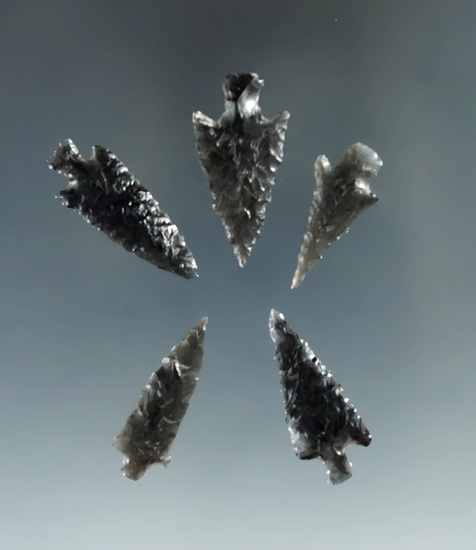 """Set of five assorted obsidian arrowheads found in Oregon, largest is 1 1/8""""."""