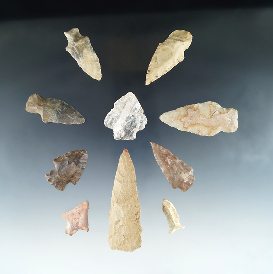 """Set of 9 assorted arrowheads, largest is 3""""."""