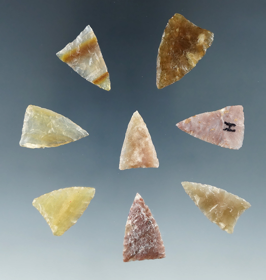 """Set of 8 assorted arrowheads from the Plains region, largest is 1""""."""