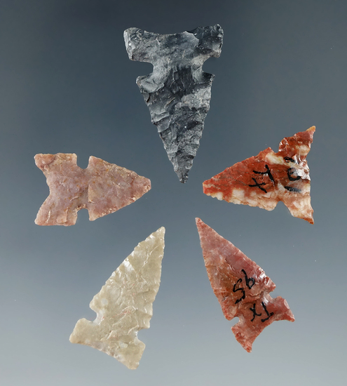 """Set of 5 nice Texas and Kansas arrowheads, largest is 1""""."""