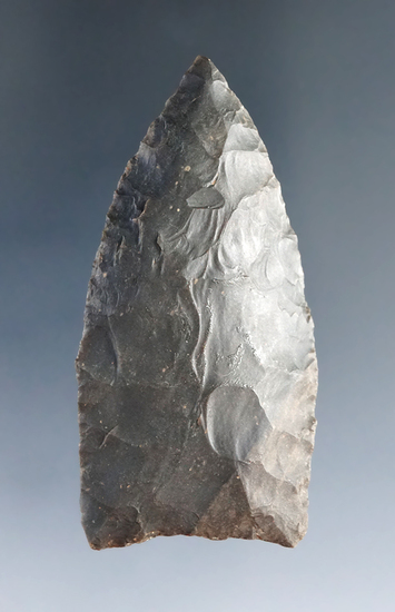 """2 3/8"""" Paleo Lanceolate found in Alabama. Ex Steve Lewis Collection."""