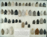 Large group of approximately 45 Archaic Side Notched points found in north central Ohio.