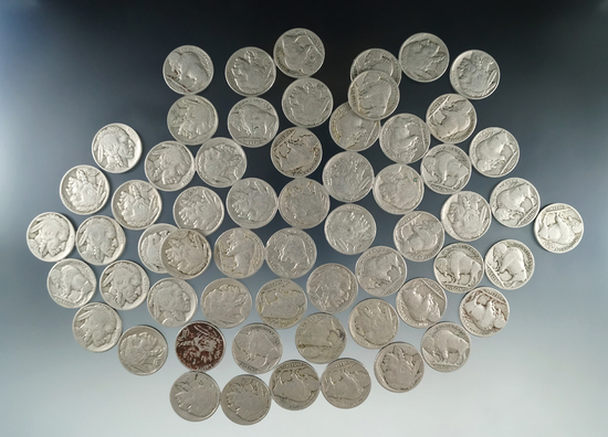 60 Assorted Buffalo Nickels Mostly Full Date G-F