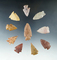 Set of 10 Colorado Arrowheads, largest is 1 3/4