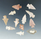 Set of 12 arrowheads made from nice material which were glued to a board, largest is 1