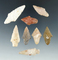 Set of eight assorted arrowheads, largest is 1 15/16