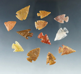 Set of 12 Colorado Arrowheads, largest is 15/16