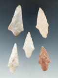 5 nice arrowheads. Part of a group found by Glenn McDonald along the Red and little Missouri rvr