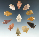 Set of 12 Colorado Arrowheads, largest is 1 1/4