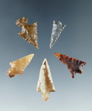 Set of five Columbia River arrowheads in nice condition, largest is 1 1/16