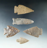 Nice set of five large arrowheads found in Texas, largest is 3