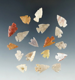 Set of 18 Colorado Arrowheads, largest is 7/8