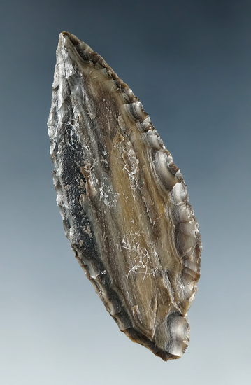 "2 1/16"" Cascade Leaf Blade made from Petrified Wood, found near the Columbia River."