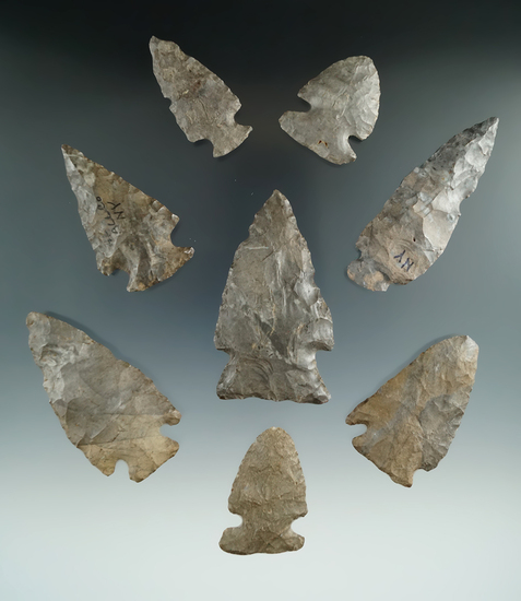 """Set of eight assorted Onondaga Flint points found in New York.   Ex. Howdy Lang. largest is 2 3/4""""."""