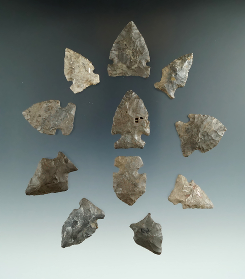 "Set of 11 assorted New York arrowheads, largest is 1 3/8""."