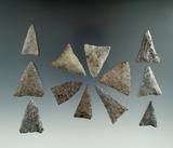 Group of 12 Triangular arrowheads found near Belfast, Allegheny Co., New York.