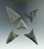 Set of five well styled triangular arrowheads found near Winney Island, New York. Largest is 1 7/8