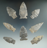 Set of 8 assorted arrowheads found on the Comstock and Vaugan Farm in Allegheny Co., NY.