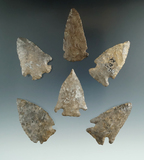 Set of six assorted Onondaga Flint arrowheads found in New York, largest is 2 1/16