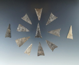 12 triangular points in very good condition, found at the Noble site, Belmont, Allegheny Co., NY