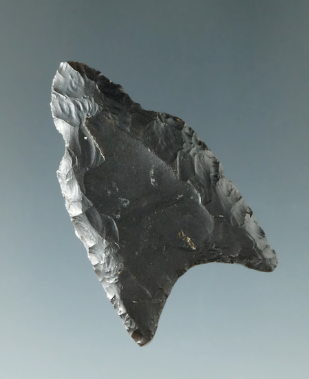 "1 11/16"" Paleo Fluted Clovis made from Coshocton Flint found in Delaware Co., Ohio."