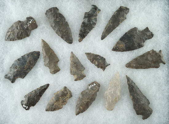 Group of 15 middle to late Archaic points found near the upper Susquehanna, Otsego County NY.