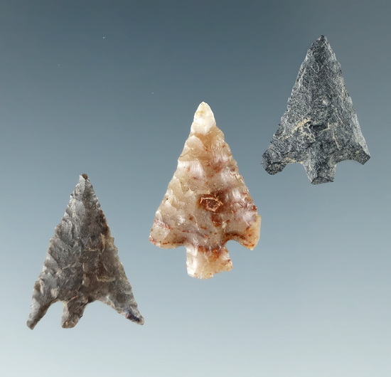 "Set of three Columbia Plateau points found near the Columbia River, largest is 13/16""."