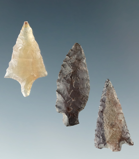 "Set of three Columbia River arrowheads, largest is 7/8""."