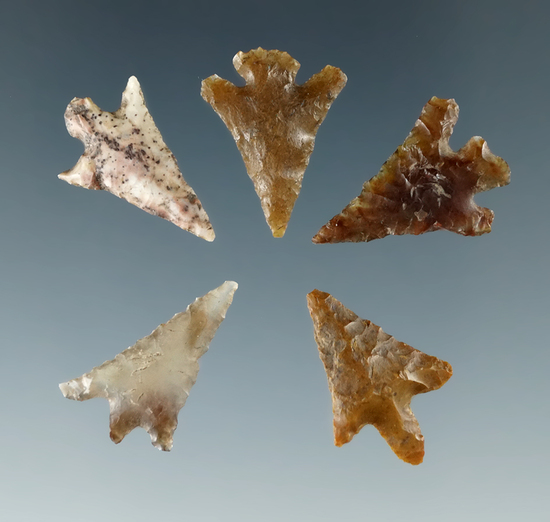 "Set of five Columbia River Gem points found near the Columbia River, largest is 11/16""."