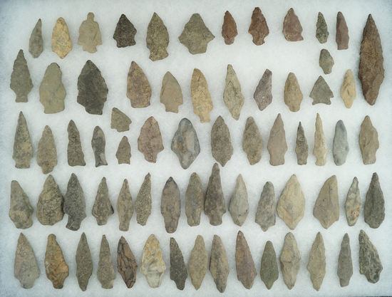 "Large group of approximately 69 New Jersey arrowheads, largest is 2 1/2""."