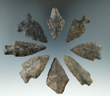 Set of 8 assorted arrowheads found in Maryland, largest is 2 1/8