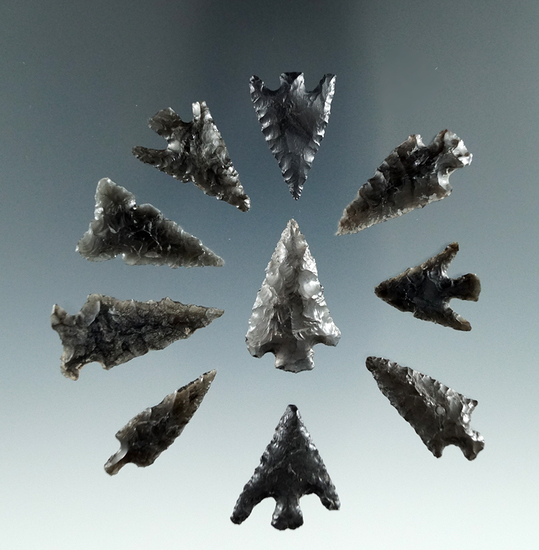 """Group of ten small Obsidian Points, longest is 1 1/8"""", found in the Great Basin, Oregon."""
