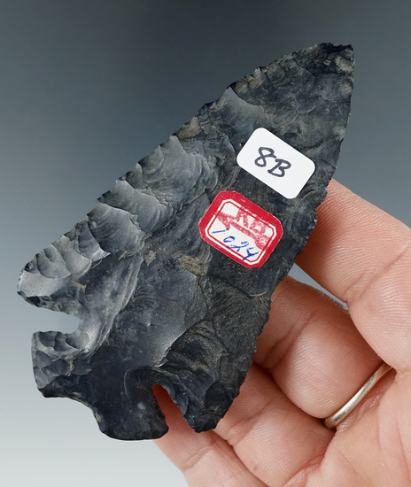 """3 7/16"""" Archaic Thebes made from Coshocton Flint, found in Wayne Co., Ohio. Bennett COA."""
