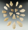 Group of 20 Quartz arrowheads found in New Jersey, largest is 2 3/16