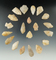 Set of 20 Quartz arrowheads found in New Jersey, largest is 1 3/8