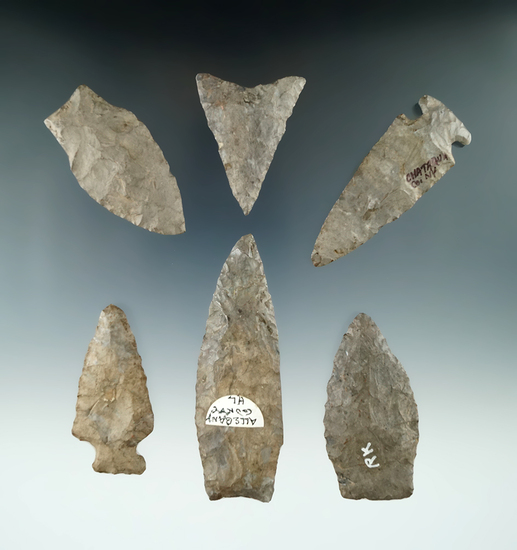 """Set of six restored arrowheads found in New York, largest is 3 3/8""""."""