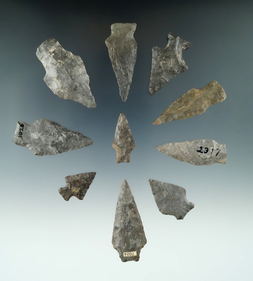 """Set of 10 assorted points found in New York, largest is 2""""."""