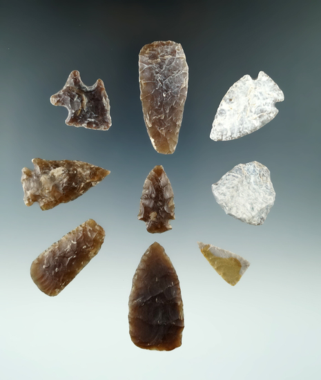 "Very nice group of nine plains area arrowheads, largest is 1 15/16""."