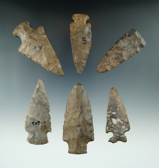 """Set of six assorted points found in New York, largest is 2 7/8""""."""