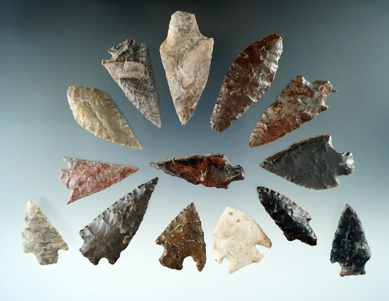 """Group of 14 assorted arrowheads found near the Columbia River by Norma Berg. Largest is 1 3/4""""."""