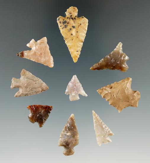 Group of nine assorted arrowheads found near the Columbia River, Klickitat Co., Washington.
