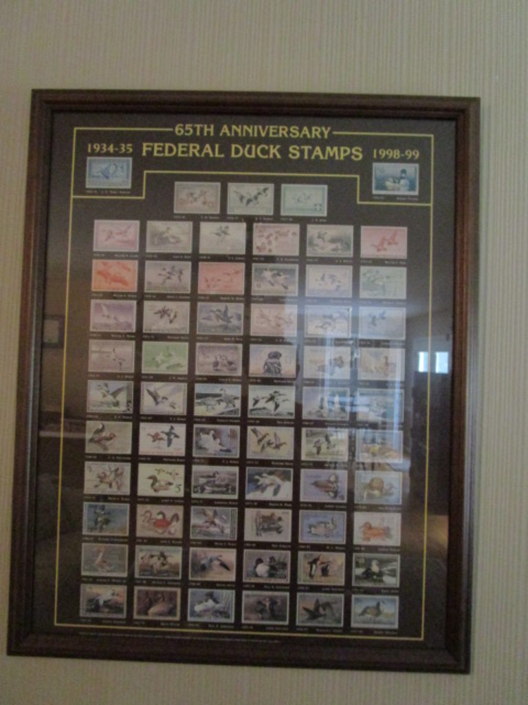 """Framed """"65th Anniversary Federal Duck Stamps"""" Print"""